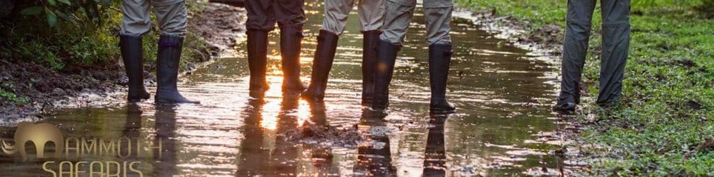 Kongo: Řeka extrémů
