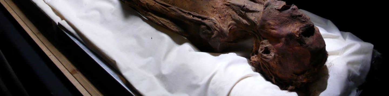 Prima ZOOM – poznávejte svět zblízka - Odhalený Egypt 1