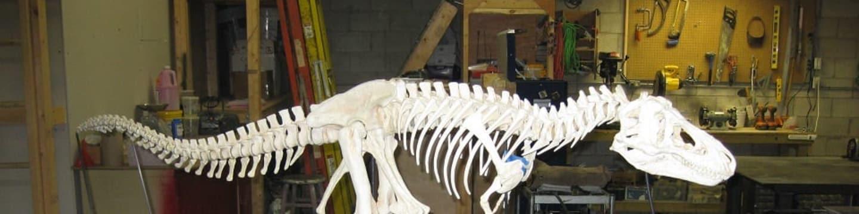 Rekonstrukce T-Rexe