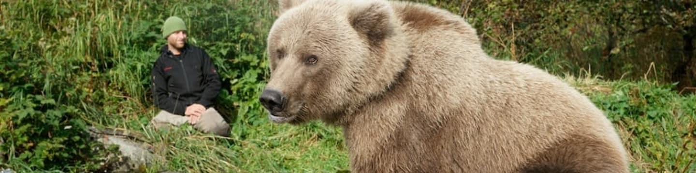 Sám mezi medvědy grizzly